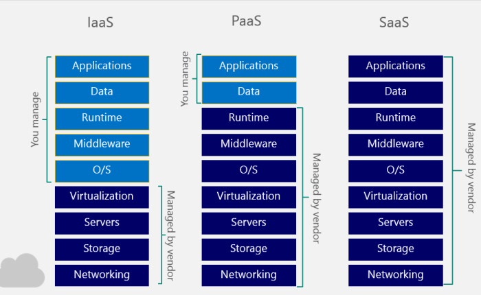 89% of Businesses go with IaaS